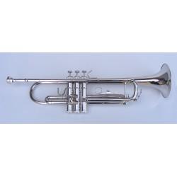 Trompeta Gama media Sib StarSMaker® SM-TR024
